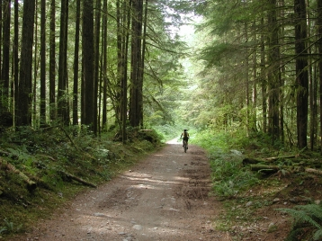 The endless trails of Squamish